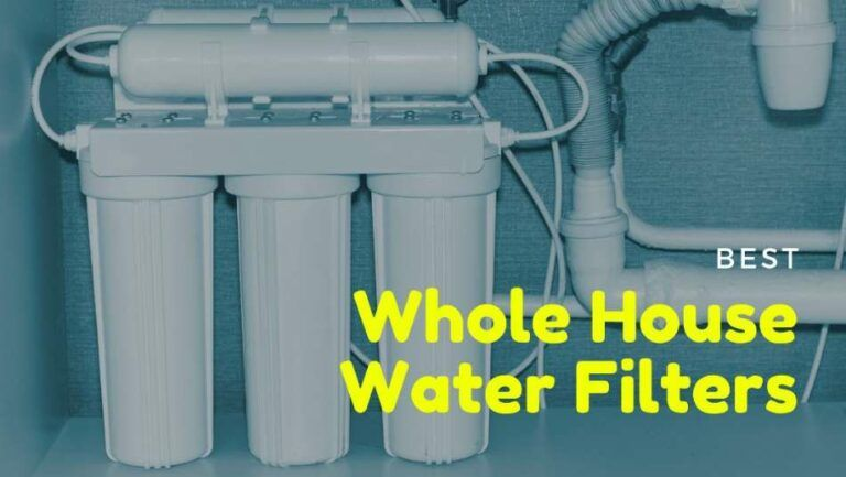 Best Whole House Water Filters (with Reviews)